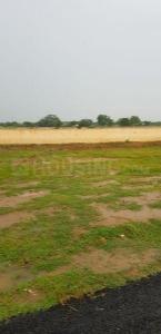 254 Sq.ft Residential Plot for Sale in Sector 30 Rohini, New Delhi