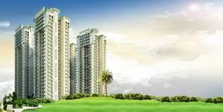 Gallery Cover Image of 1985 Sq.ft 4 BHK Apartment for buy in Dev Sai Sports Home, Noida Extension for 8853000