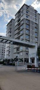 Gallery Cover Image of 910 Sq.ft 2 BHK Apartment for rent in Ecolife Elements of Nature, Balagere for 23000