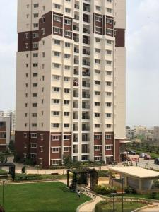Gallery Cover Image of 1128 Sq.ft 2 BHK Apartment for rent in Electronic City for 24000