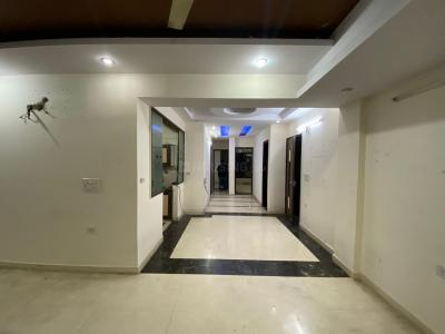 Gallery Cover Image of 1800 Sq.ft 3 BHK Apartment for rent in Punjabi Bagh for 40000