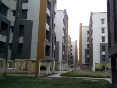 Gallery Cover Image of 1000 Sq.ft 2 BHK Apartment for rent in Space Clubtown Gardens, Ariadaha for 11000