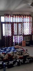 Gallery Cover Image of 880 Sq.ft 1 BHK Apartment for rent in Sector 49 for 15000