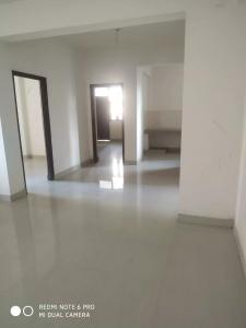 Gallery Cover Image of 1510 Sq.ft 3 BHK Apartment for buy in Raj Nagar Extension for 4550000