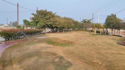 1200 Sq.ft Residential Plot for Sale in Palakhedi, Indore