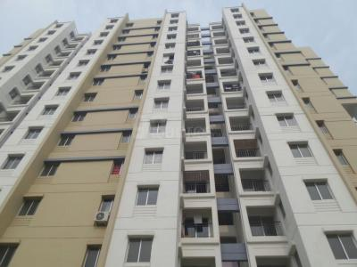 Gallery Cover Image of 680 Sq.ft 2 BHK Apartment for rent in Shapoorji Pallonji Group SP Shukhobristhi, New Town for 12000