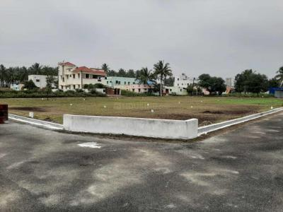 Gallery Cover Image of  Sq.ft Residential Plot for buy in Ganapathy for 1025000