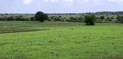 Gallery Cover Image of  Sq.ft Residential Plot for buy in Bharat Heavy Electricals Limited for 907500