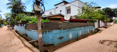 Gallery Cover Image of 1000 Sq.ft 3 BHK Independent House for buy in Bhangagarh for 18000000