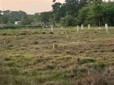 Gallery Cover Image of  Sq.ft Residential Plot for buy in Rasapunja for 220000