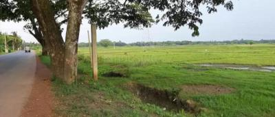 Gallery Cover Image of  Sq.ft Residential Plot for buy in Rajarhat for 1400000