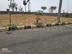 Gallery Cover Image of  Sq.ft Residential Plot for buy in Adibhatla for 3600000