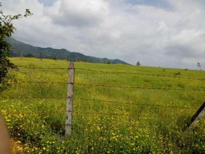 15000 Sq.ft Residential Plot for Sale in Katraj, Pune