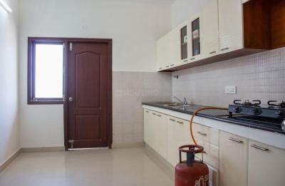 Kitchen Image of PG 4642914 Mahadevapura in Mahadevapura