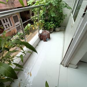 Balcony Image of Rita in Sector 15 Rohini