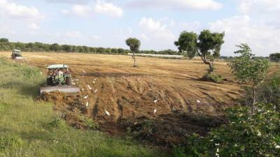 Gallery Cover Image of  Sq.ft Residential Plot for buy in Gachibowli for 1812500