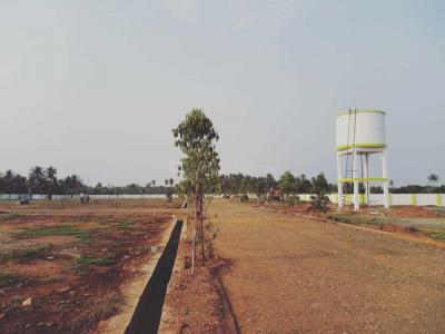 Gallery Cover Image of  Sq.ft Residential Plot for buy in Solar Pirivu for 1550000