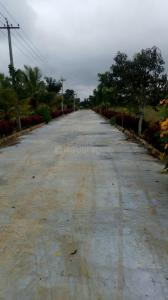 Gallery Cover Image of  Sq.ft Residential Plot for buy in Hosur for 1387500