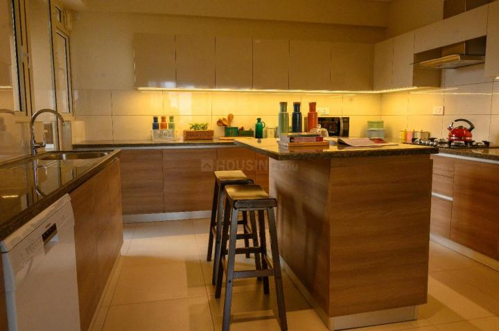 Kitchen Image of 4117 Sq.ft 4 BHK Apartment for buy in Kalpataru Vista, Sector 128 for 36000000