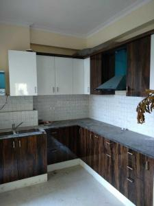 Gallery Cover Image of 1650 Sq.ft 3 BHK Apartment for rent in SVP Gulmohur Residency, Ahinsa Khand for 16000