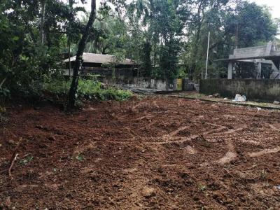202 Sq.ft Residential Plot for Sale in Chottanikkara, Kochi