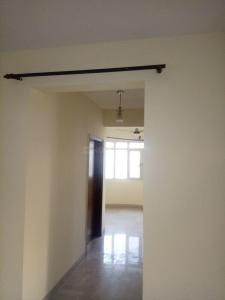 Gallery Cover Image of 1400 Sq.ft 3 BHK Apartment for rent in Omicron I Greater Noida for 7000