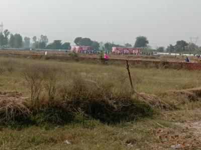 100 Sq.ft Residential Plot for Sale in Sector 6, Gurgaon