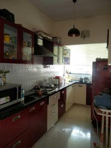 Kitchen Image of PG 4040256 Malleswaram in Malleswaram