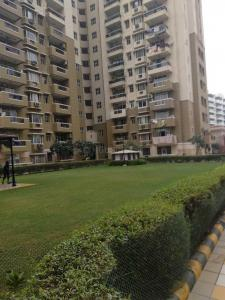 Gallery Cover Image of 1625 Sq.ft 3 BHK Apartment for rent in Ahinsa Khand for 20000