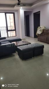 Gallery Cover Image of 1040 Sq.ft 2 BHK Apartment for rent in Sector 137 for 16000