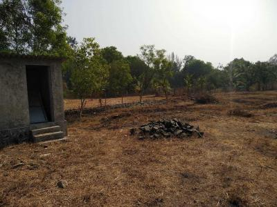 Gallery Cover Image of 10890 Sq.ft Residential Plot for buy in Nagaon for 11000000