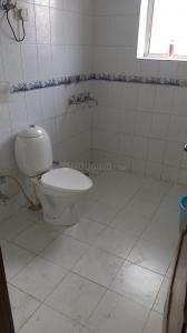 Bathroom Image of Boys PG in Sector 15