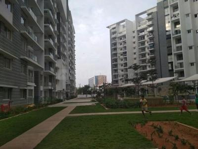 Gallery Cover Image of 1400 Sq.ft 3 BHK Apartment for rent in Bellandur for 40000