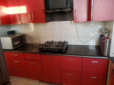 Kitchen Image of PG 5911297 Palam Vihar in Palam Vihar