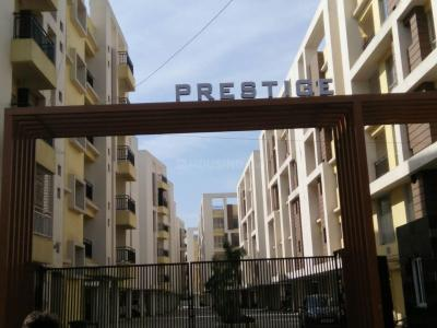 Gallery Cover Image of 891 Sq.ft 2 BHK Apartment for rent in Vedic Village for 13000