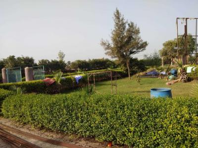Gallery Cover Image of 40 Sq.ft Residential Plot for buy in Gamma II Greater Noida for 344000