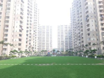 Gallery Cover Image of 700 Sq.ft 1 BHK Apartment for buy in Ace Platinum, Zeta I Greater Noida for 2100000