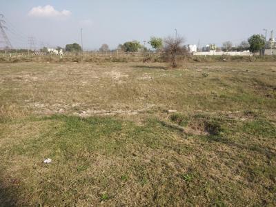 306 Sq.ft Residential Plot for Sale in Jagdishpur, Sonepat