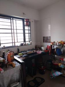 Gallery Cover Image of 550 Sq.ft 1 RK Apartment for rent in Mahalunge for 9000