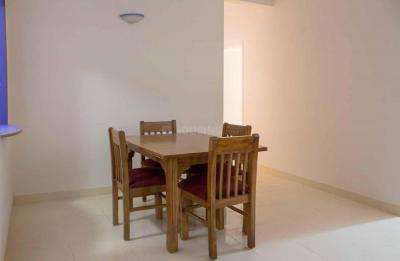 Dining Room Image of PG 4643496 Marathahalli in Marathahalli