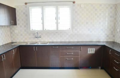 Kitchen Image of PG 4642070 Whitefield in Whitefield