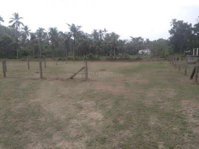 3746 Sq.ft Residential Plot for Sale in Kuttoor, Thrissur