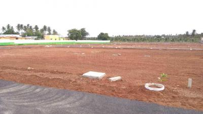 Gallery Cover Image of  Sq.ft Residential Plot for buy in Solar Pirivu for 699000