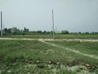 500 Sq.ft Residential Plot for Sale in Kalyan Vihar, New Delhi