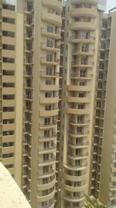 Gallery Cover Image of 1250 Sq.ft 2 BHK Apartment for rent in Noida Extension for 8000