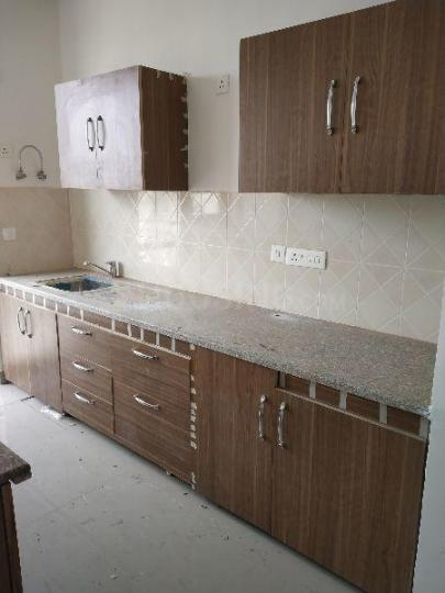 Kitchen Image of 1768 Sq.ft 3 BHK Apartment for rent in Sector 37C for 18000