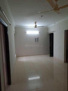 Gallery Cover Image of 1210 Sq.ft 2 BHK Apartment for rent in Noida Extension for 5500