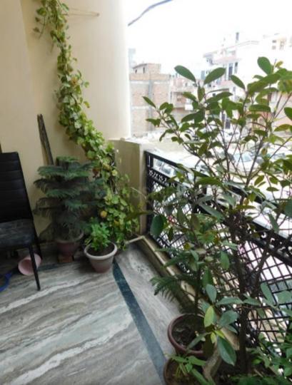 Balcony Image of Monika PG in Dwarka Mor