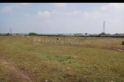 Gallery Cover Image of  Sq.ft Residential Plot for buy in Veppampattu for 800000
