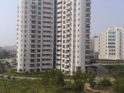 Gallery Cover Image of 3400 Sq.ft 4 BHK Apartment for rent in Sector 53 for 75000
